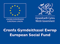 European Social Fund Training Programmes